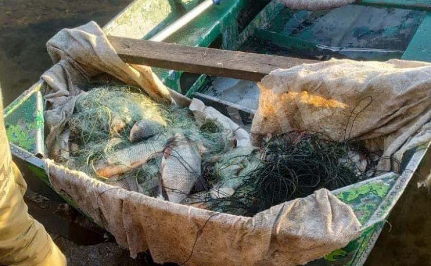 Под Кривым Рогом браконьеры наловили рыбы на 8,2 тыс. грн.