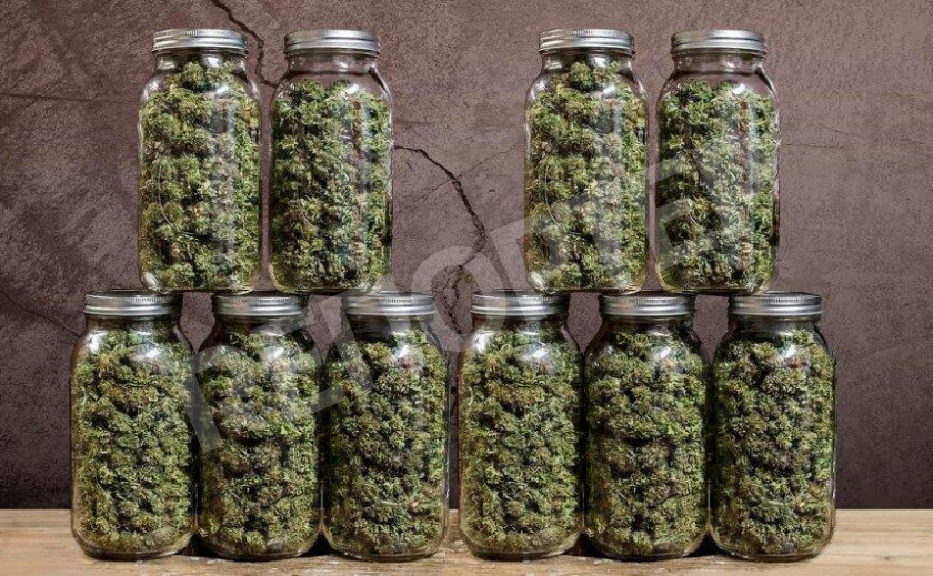 В Кривом Роге наркоделяги консервировали марихуану