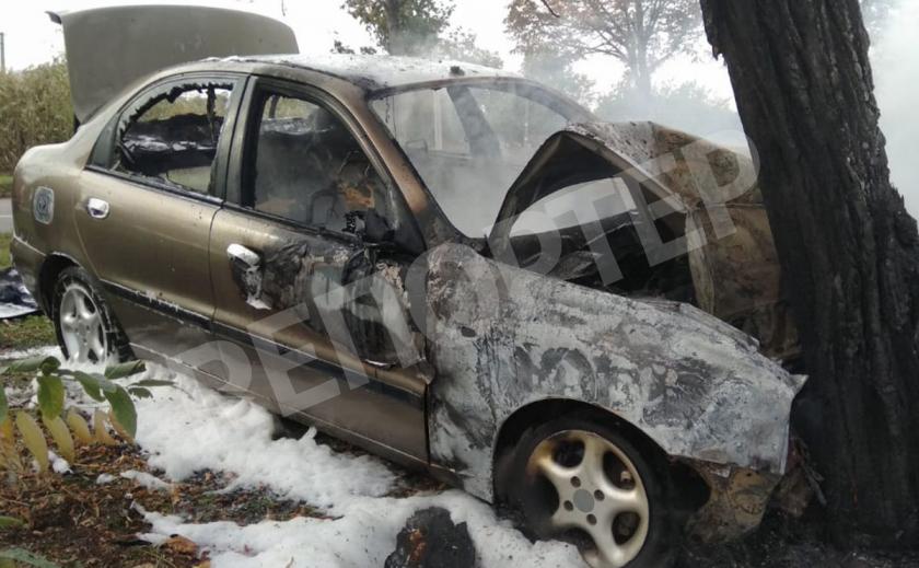Криворожский водитель врезался в дерево и едва спасся из загоревшейся машины